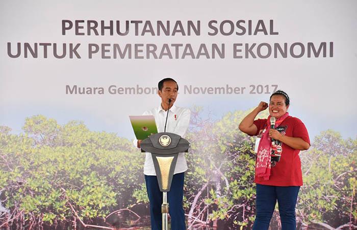 Aktivis Lingkungan: Program Perhutanan Sosial, Keberpihakan Jokowi Terhadap Rakyat