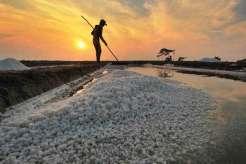 Integrasi Lahan Tambak Garam Rakyat Diusulkan Dikelola oleh Kelompok Badan Usaha Daerah