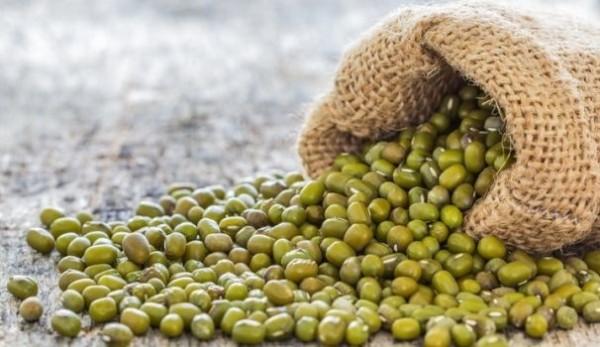 Kacang Hijau, Biar Kecil Kaya Manfaat