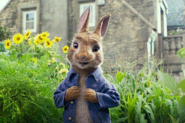 Peter Rabbit: Saat Peter Tampil Beda