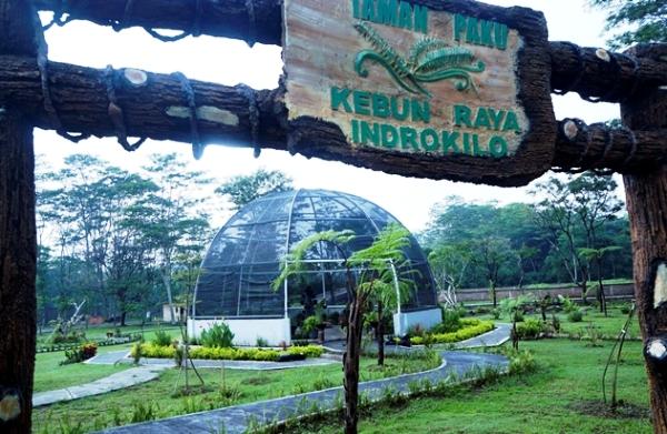 Kebun Raya Indrokilo Boyolali Sulap Hujan Jadi Air Siap Minum