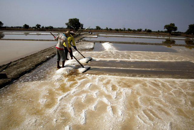 Pemerintah akan Bangun Gudang Garam Nasional di Karawang