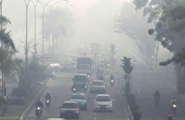 Ilustrasi asap akibat kebakaran hutan