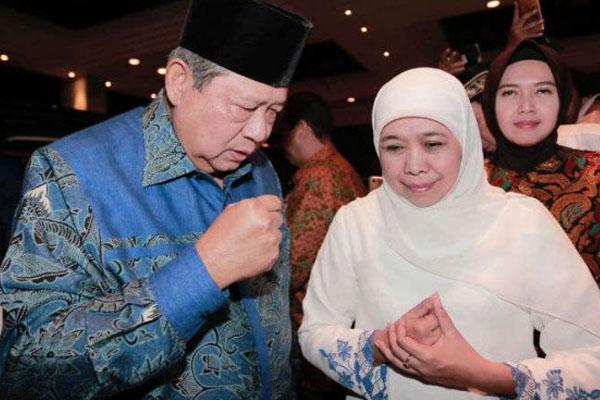 Mendukung Jokowi