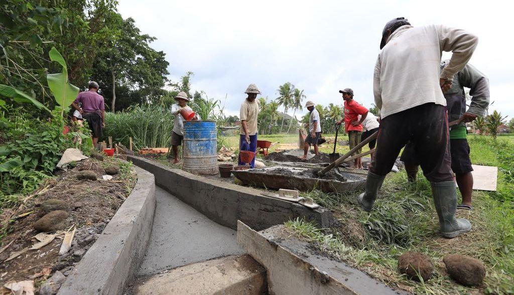 Warga Singakerta Bali Gotong Royong Bangun Irigasi Pakai Dana Desa