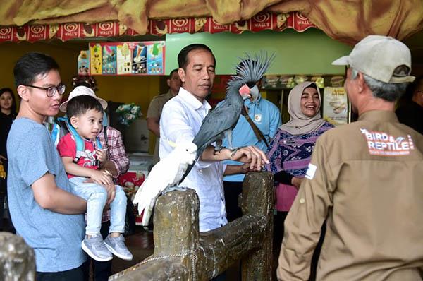 Presiden Jokowi Ajak Cucu ke TMII, Kenalkan Berbagai Spesies Burung