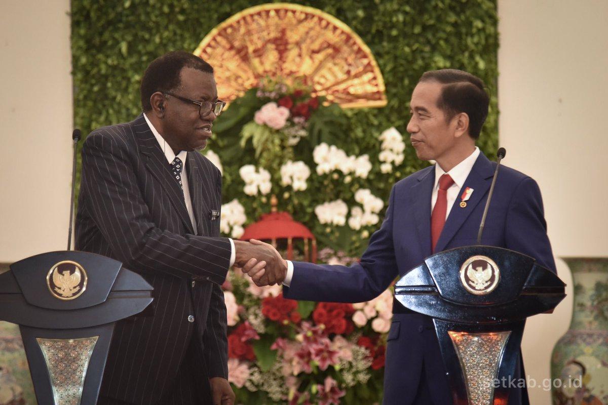 Jokowi Dorong Kerja Sama Infrastruktur dengan Presiden Namibia