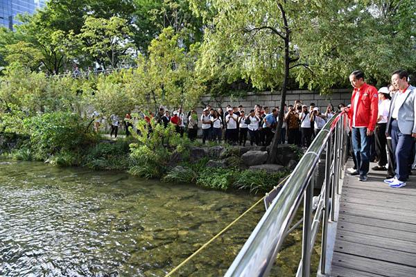 Presiden Jokowi Ingin Ciliwung Seperti Sungai Cheonggyecheon di Korea