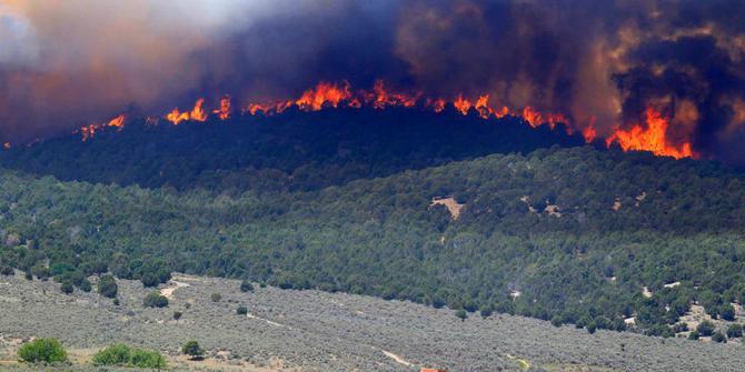 Bamsoet Minta KLHK Berupaya Padamkan Kebakaran Hutan Gunung Merbabu