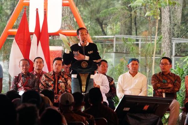 Presiden Ungkap Mengapa Bagikan SK Izin Pemanfaatan Hutan