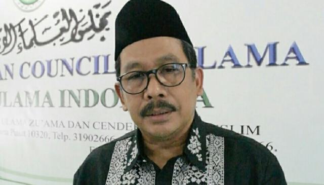 Maulid Nabi, MUI, Toleransi
