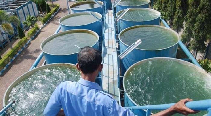 Layanan Air Bersih, Layak Air Minum