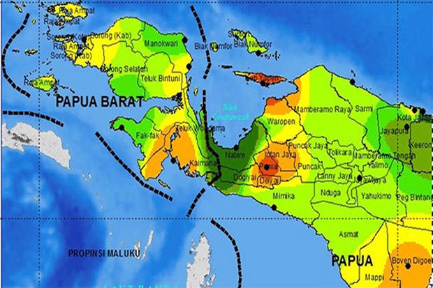 """Investasi """"Do No Harm Policy"""" Mutlak di Papua"""