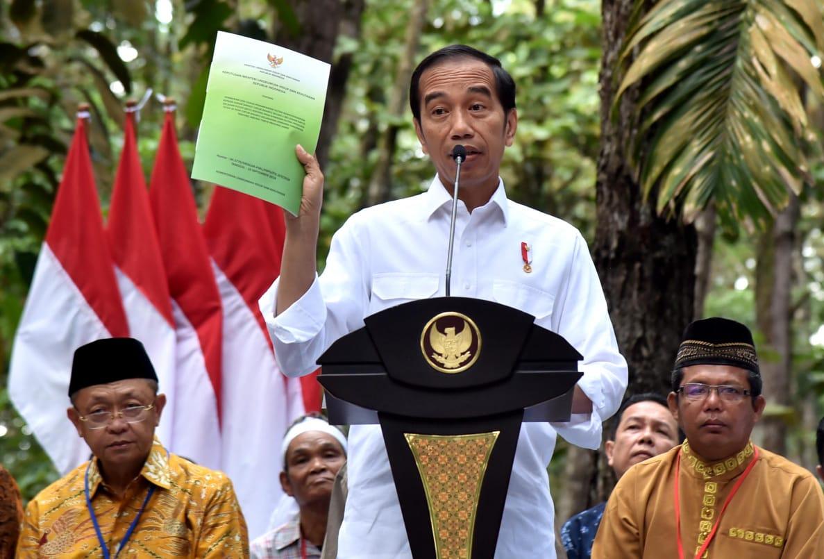 Presiden Jokowi Serahkan SK Perhutanan Sosial Seluas 91 Ribu Hektare di Jambi
