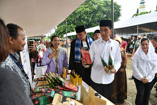 Jokowi, Jan Ethes, pemerintahan jokowi