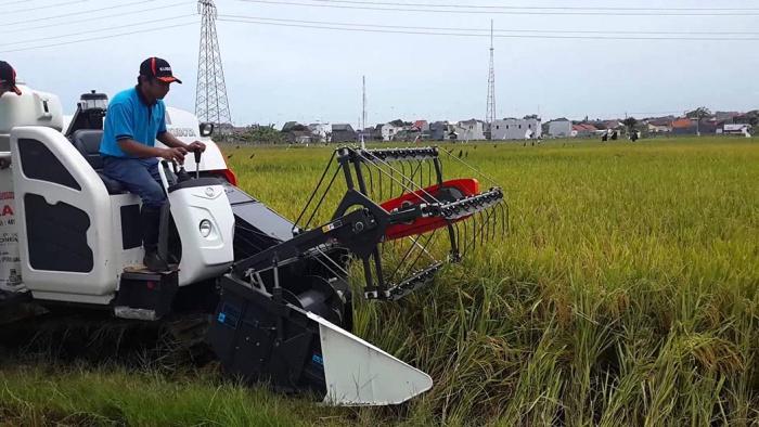 modernisasi, pertanian, pangan