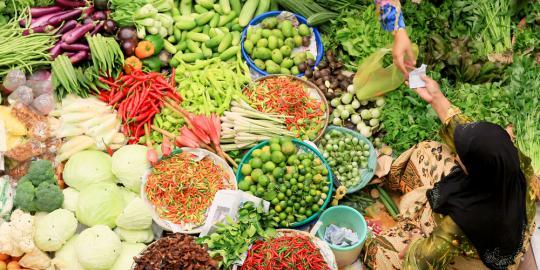 pemerintah pastikan harga bahan pokok ramadan 2019