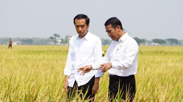 alokasi dana kementerian pertanian