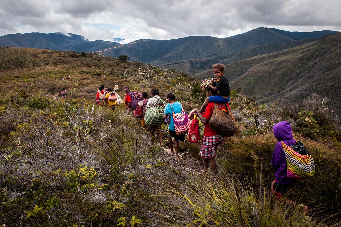 Tanah Papua