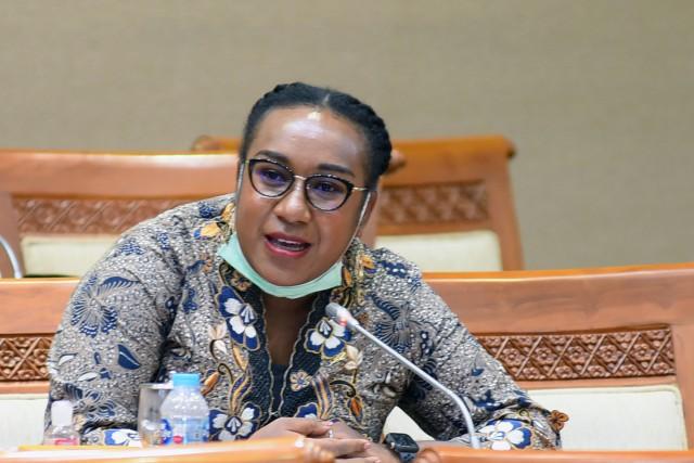 Legislator Asal Papua Dorong Pembangunan Smelter Pertama PT Freeport Indonesia di Papua